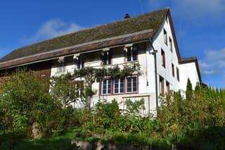 Ein einmaliges Bijou! Idyllisches Bauernhaus mit viel Potential vor den Toren Zürichs (2)