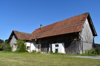 Ein einmaliges Bijou! Idyllisches Bauernhaus mit viel Potential vor den Toren Zürichs (3)