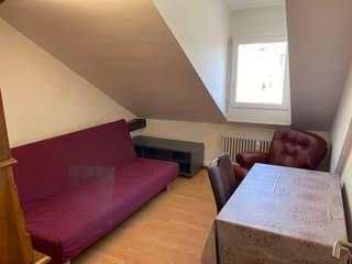 Exklusive Dachwohnung/Penthouse (3)