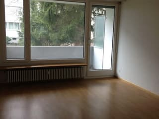 Renovierte 2-Zimmerwohnung mit neuer Küche zu vermieten (4)