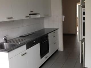 Renovierte 2-Zimmerwohnung mit neuer Küche zu vermieten (2)