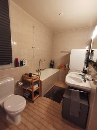 Apartment in Geneva (4)