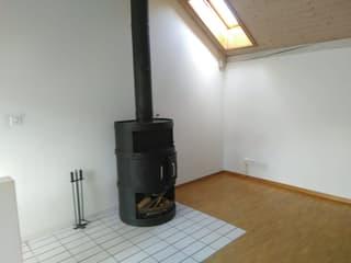 Attraktive 2 1/2 Zimmer Maisonette am Zürichberg (3)