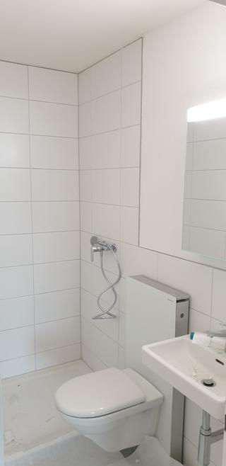 Erstvermietung nach Renovation einer Familien-Wohnung (4)