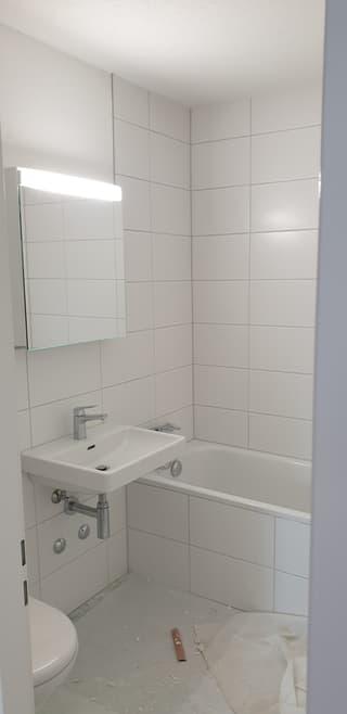 Erstvermietung nach Renovation einer Familien-Wohnung (3)