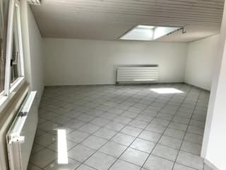 schöne und helle 2.5 Zimmer Dachwohnung (4)