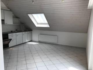 schöne und helle 2.5 Zimmer Dachwohnung (3)