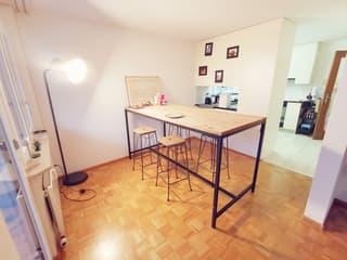 Schöne, helle 3.5 Zimmer-Wohnung (3)