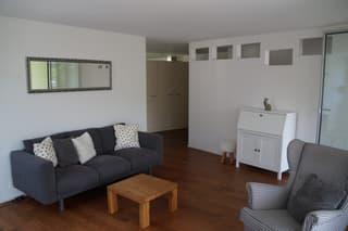 geräumige, moderne, sonnige 4.5- Zimmerwohnung mit Aussicht ins Grüne (2)