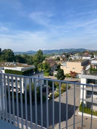 5 1/2-Zimmer-Attikawohnung in Allenwinden, Kanton Zug (4)