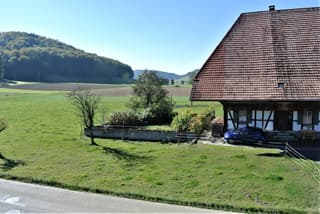 Zweifamilienhaus in Bollodingen (3)