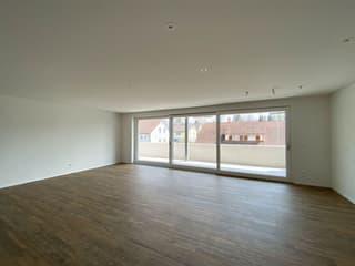 Moderne 4.5-Zimmer-Neubauwohnung (3)