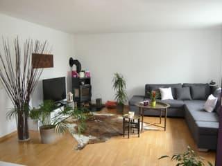 Gemütliche und ruhige Wohnung, nähe Flughafen Zürich (4)