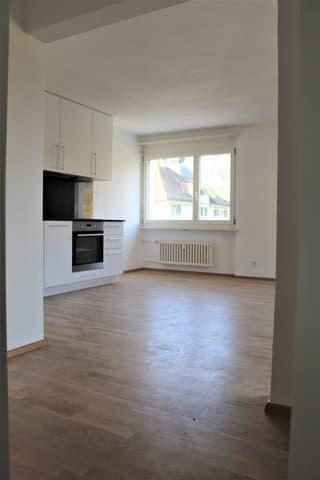 1.5 Zimmer Wohnung (Erstvermietung) (2)