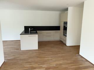 moderne 3.5-Zimmerwohnung im Bächlipark Wollerau (3)