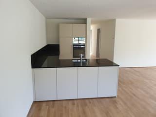 moderne 3.5-Zimmerwohnung im Bächlipark Wollerau (2)