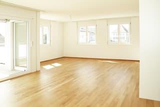 Lichtdurchflutete grosszügige 3.5 Zimmer-Wohnung (3)
