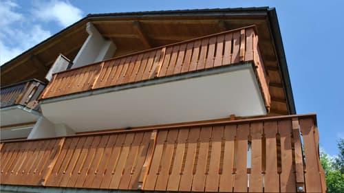 Superbe Appartement demi-chalet à proximité des pistes de ski (1)