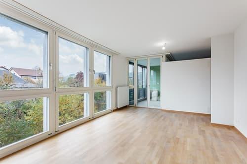 Bel appartement moderne en duplex
