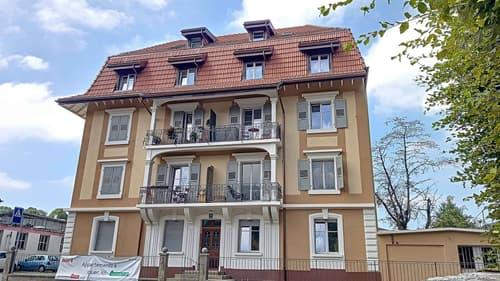 Entièrement rénové  - Appartement de 1 pièce