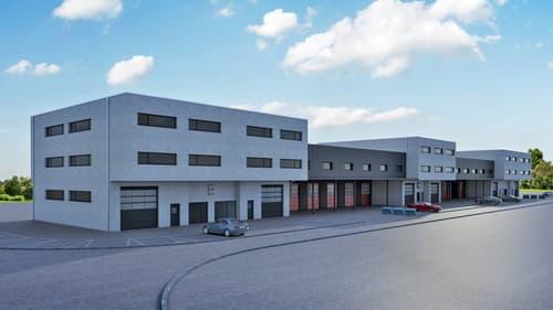Halle industrielle sur 2 niveaux à Collombey, lot D 17