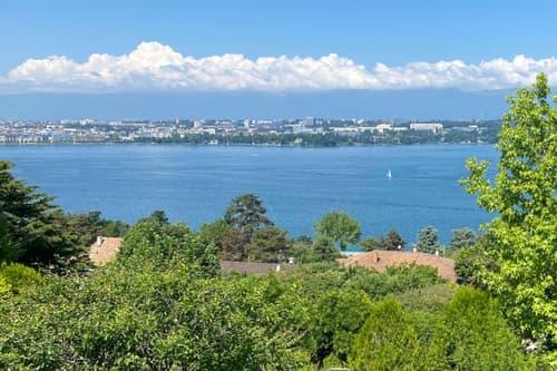 COLOGNY - Villa avec vue lac à couper le souffle