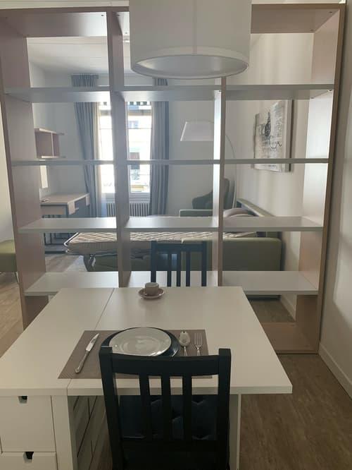 Appartement de 1.5 pièce au 3ème étage - PROCHE DU LAC