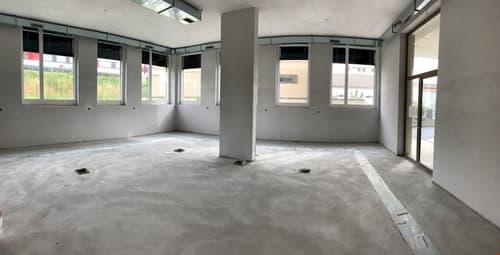 Vos bureaux, dés 152  m2, en face du lac, à louer à Morges