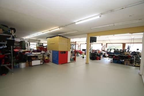 Vaud locaux/ateliers/dépôts accès plain pied