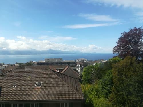 Vue sur Lac et parc, bureaux lumineux et fonctionnels de 760 m2 à louer, Lausanne