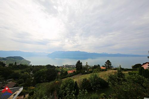 Splendide villa individuelle de 7.5 pièces / Terrasse / Jardin et vue