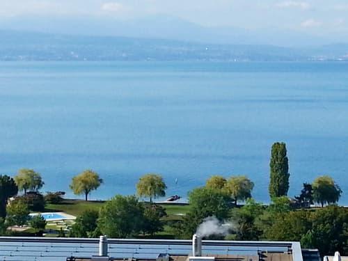 OBJET UNIQUE // Penthouse de 180m2 avec 300m2 de terrasse - Vue lac