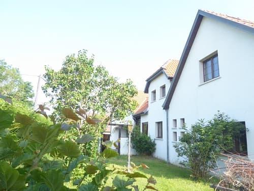 Réf: 9910*** Axe Bâle - Altkirch: Bel appartement F 3 meublé env. 100 m² au sol (80 m² s.h)