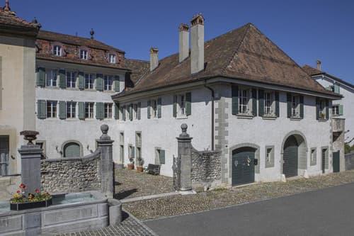 Très belle maison vigneronne (1)