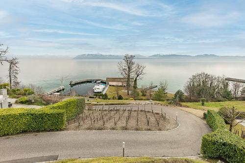 Rare property - on the lakeshore at 5 minutes from Morges