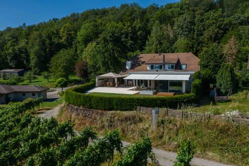 Einzigartige Landhausvilla mit eigenem Weingut