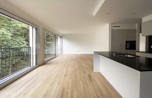 Nuovo appartamento 4.5 locali con terrazza e giardino privato