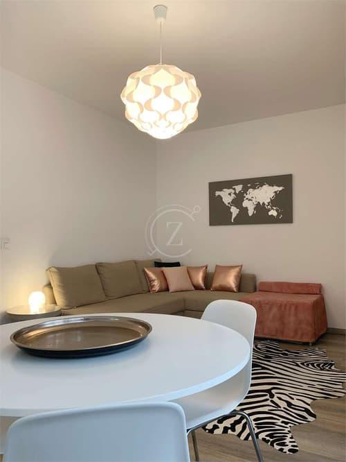 Affitto appartamento arredato 1,5 Lugano centro