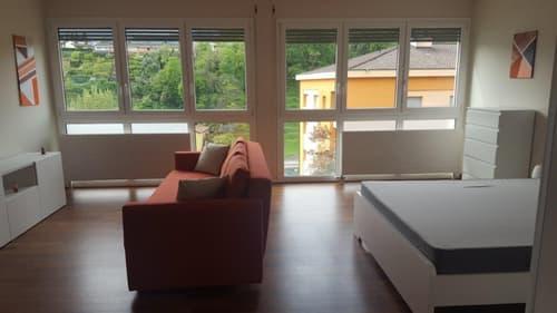 Appartamento 1,5 locali ristrutturato a Lugano-Pazzallo