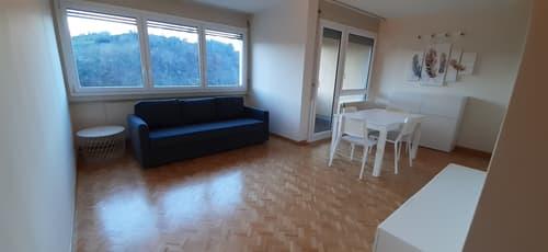 Appartamento 3,5 locali ristrutturato a Lugano - Pazzallo