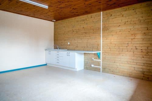 Dpt Isère (38), à vendre APPRIEU appartement T4