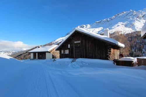 4.5 Zimmer Maiensäss in Radons mitten im Ski- / Wandergebiet Savognin