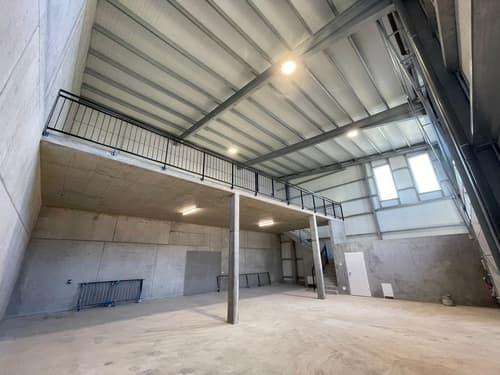 Halles artisanales de 168 à 274 m2