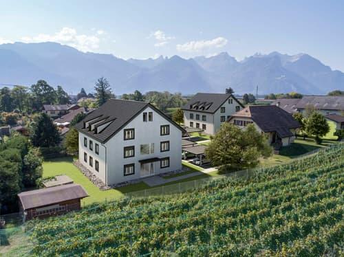 Au jardin des Vignes,  3,5 pièces  avec balcon...