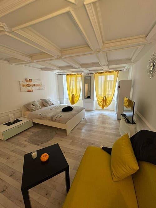 Très joli loft de 44 m2, situé au 2ème donnant sur la rue
