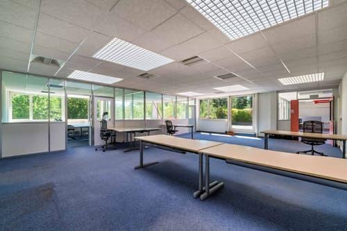 Lumineux bureaux de 468 m2 divisibles - Belle terrasse