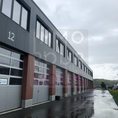 Box artisanal-industriel de 110 m2