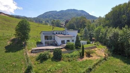 SITUATION EXCLUSIVE I Magnifique villa rénovée avec une vue sur le lac (1)