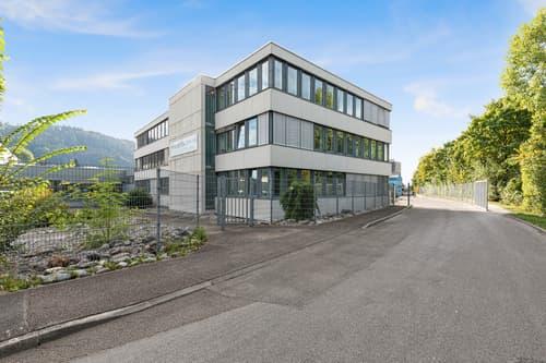 Steuern sparen mit Firmensitz im Kt. Luzern!