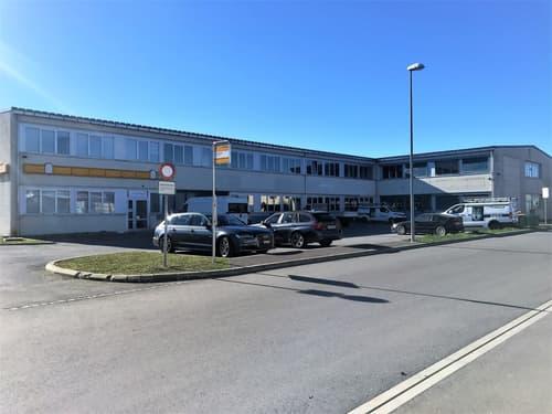 2 spacieux locaux/bureaux de 128 et 129 m2 à louer au 1er étage